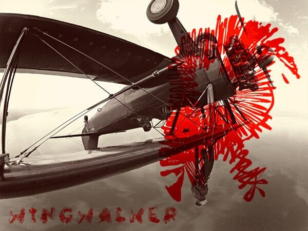 Barnstormer, Dogfighter, Wingwalker
