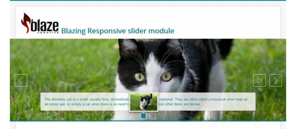 Blazing Responsive slider