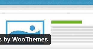 projects by woo themes