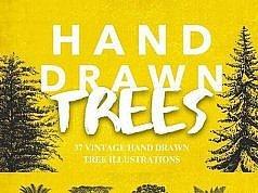 иллюстрации деревьев в векторе