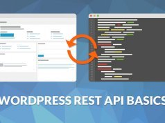WordPress API