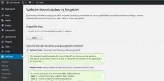 Website Monetization by MageNet