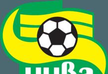Эмблема футбольного клуба «Нива» в векторе